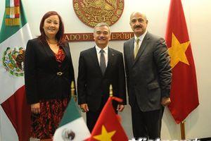 Mexico coi trọng phát triển quan hệ mọi mặt với Việt Nam