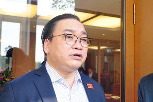 Thanh tra lại vụ rừng Sóc Sơn bị 'xẻ thịt': Bí thư Hà Nội nói gì?