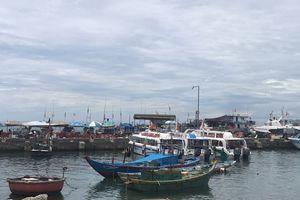 Tăng cường chống khai thác hải sản bất hợp pháp trên biển