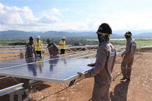 Xu hướng phát triển nguồn năng lượng tái tạo
