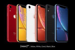 iPhone XR 'cháy hàng' trước ngày lên kệ
