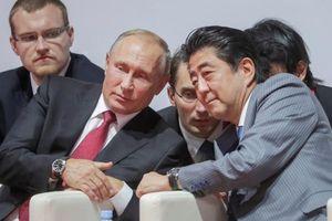 Quan hệ Nga-Nhật bước vào kỷ nguyên mới dựa vào lòng tin giữa Abe-Putin