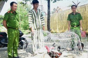 Bắt quả tang 54 người tham gia sát phạt trên sới gà