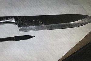 Hai nữ sinh Mỹ mang dao tới trường, lên kế hoạch giết 15 người
