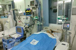 Cứu sống Việt kiều Mỹ ngưng tim ngưng thở 3 lần bằng kỹ thuật 'gấu ngủ đông'