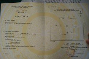 Trao giấy chứng nhận quyền sử dụng đất cho giáo xứ Thanh Sơn, xã Nghi Phương