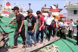Quảng Ngãi: Đưa 13 ngư dân bị nạn trên biển về bờ an toàn