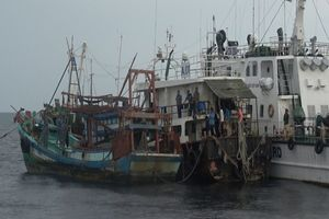 Bắt giữ 3 tàu vận chuyển 250.000 lít dầu DO trái phép