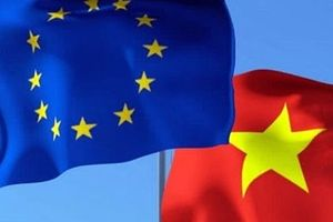 Việt Nam nỗ lực thúc đẩy tiến trình ký kết Hiệp định EVFTA
