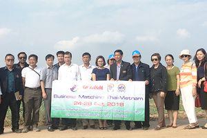 Doanh nghiệp, hợp tác xã Thái Lan - Hà Nội: Xây dựng đối tác thương mại nông sản