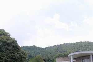 Cưỡng chế đất rừng phòng hộ Sóc Sơn: Người ký xác nhận chuyển giao đất lên tiếng
