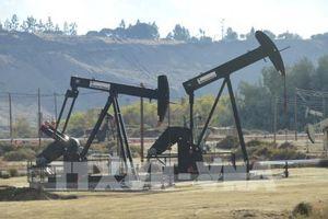 Phố Wall phục hồi kéo giá dầu thế giới tăng khoảng 1%