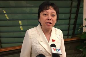 Bà Phạm Khánh Phong Lan: Tín nhiệm thấp, 'nói thẳng ra là không tín nhiệm'