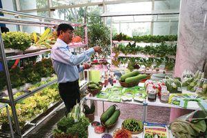 TPHCM đưa rau, hoa lan vào nhóm sản phẩm chủ lực