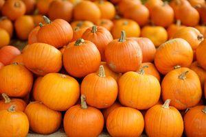 14 loại siêu thực phẩm nên ăn trong mùa thu