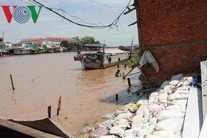 Sụt lún đang là thách thức lớn đối với Đồng bằng Sông Cửu Long
