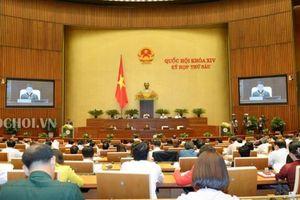 Đại biểu Nguyễn Anh Trí: nhiều lĩnh vực còn 'chưa ổn, chưa an tâm, chưa hiệu quả'