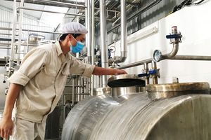 Liên kết cung ứng, tiêu thụ sản phẩm sữa bò Phù Đổng