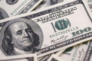 Yêu cầu kiểm tra tính hợp pháp của vụ đổi 100 USD phạt 90 triệu đồng