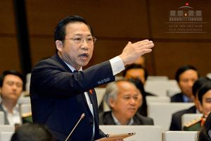 Đại biểu Quốc hội đề nghị cho phá sản ngay các DNNN kém hiệu quả