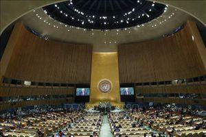 LHQ không xem xét dự thảo nghị quyết của Nga về INF