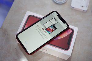 Bất ngờ với giá iPhone XR tại Việt Nam