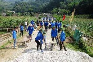 Gia Lâm (Hà Nội): Khẩn trương hoàn thiện tiêu chí môi trường và giáo dục đạt chuẩn NTM