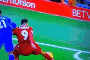 CĐV phấn khích với tình huống nằm đánh gót xâu kim đối thủ của Firmino