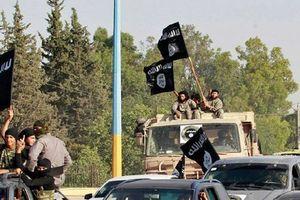 Hơn 40 tay súng được Mỹ chống lưng ở Syria bỏ mạng dưới tay IS