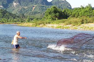 Mùa 'săn' cá mát ở sông Giăng