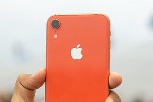 Khó hiểu khi Apple nhất quyết không bán ốp lưng cho iPhone XR
