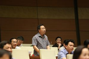 Tranh luận về Nhà hát Thủ Thiêm trên diễn đàn Quốc hội