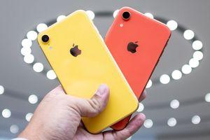 'Người dùng Việt sẽ mua iPhone X thay vì XR'