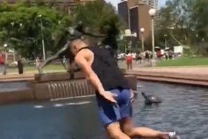 Nhảy thẳng vào hồ nước công cộng với trào lưu Silly Salmon