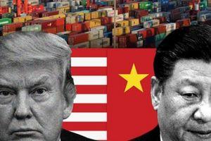 Chiến tranh thương mại Mỹ-Trung: Sự bình thản của ông Tập Cận Bình