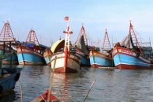 Giá nguyên liệu tăng, gần 1.000 tàu cá nằm bờ