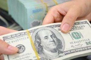 Bộ Tư pháp: Đề nghị sửa mức xử phạt căn cứ trên số lượng và giá trị ngoại tệ