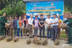 Các hoạt động hỗ trợ người nghèo ở các địa phương