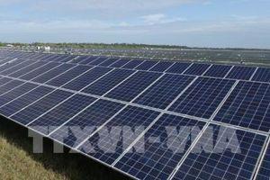 Các công ty nước ngoài chiếm lĩnh thị trường năng lượng tái tạo Hàn Quốc