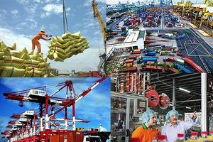 Cần tăng khả năng giám sát dòng vốn và hàng hóa ngoại vào Việt Nam