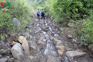 Công an Gia Lai chỉ đạo điều tra gấp vụ 'ác bá' trên núi Cheng Leng