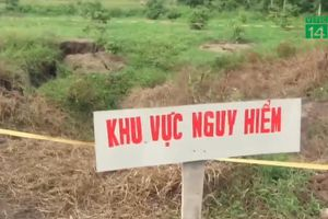 Clip: 'Hố tử thần' nuốt cả vườn cây ở Quảng Ninh vẫn tiếp tục mở rộng