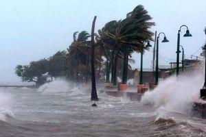 Ngành giao thông vận tải ứng phó với cơn bão Yutu