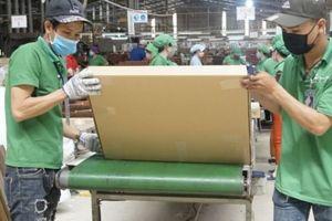Với VPA/FLEGT: Mục tiêu 20 tỷ USD xuất khẩu gỗ trong tầm tay