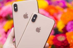 Thành công của iPhone Xs Max sẽ giúp Apple 'lên mây'