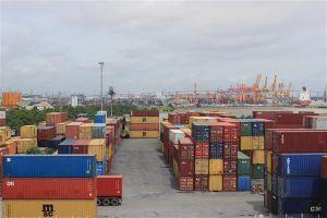 Đã có 172 doanh nghiệp kho bãi, cảng thực hiện kết nối Hệ thống VASSCM