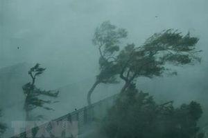 Ảnh hưởng bão YUTU: Đông Bắc Biển Đông có mưa bão, biển động mạnh