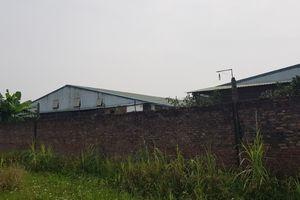 Vĩnh Phúc: Dân tố DN chiếm đất xây trang trại, nước thải đen kịt đổ ra sông Hồng