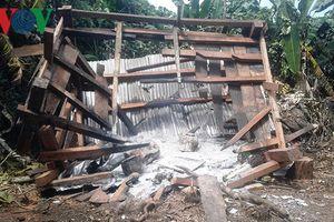 Chòi canh rừng tiếp tục bị phá tại khu vực chồng lấn quyền quản lý