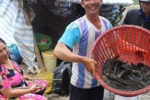 Những xóm du cư mùa nước nổi: Bắt 7 ký cá lóc, mất lọp liên tục